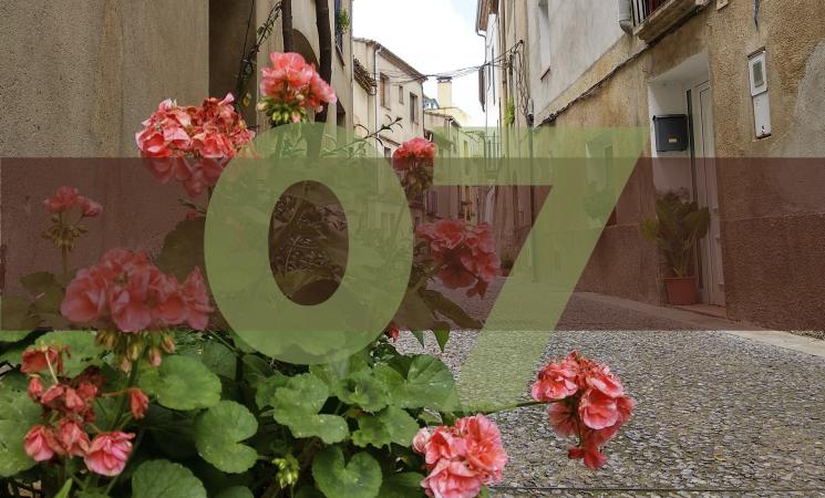 El carrer dels Perolers, herència dels oficis medievals