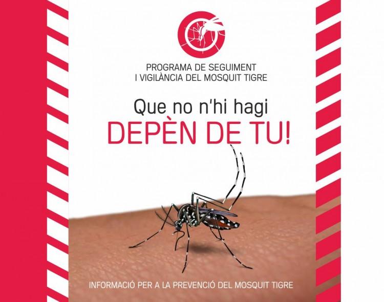 Prevenció del mosquit tigre